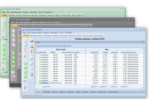 Отображение данных в программе учета взвешиваний